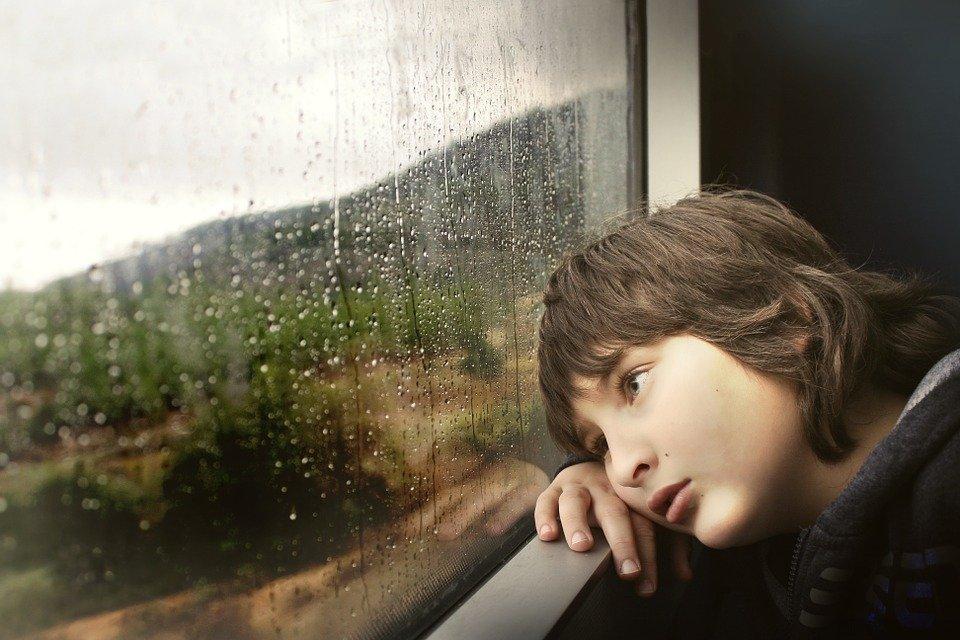 Ein Junge hat seinen Kopf ans Fenster gelegt und schaut nach draußen in die Natur